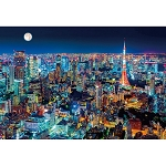 Tokyo Night View Jigsaw Puzzle (1000 pcs, 72 x 49 cm) [Beverly]